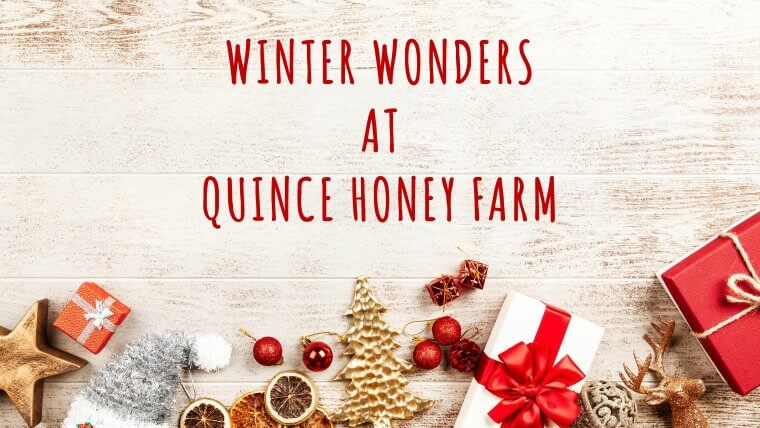 Winter Wonders at Quince Honey Farm