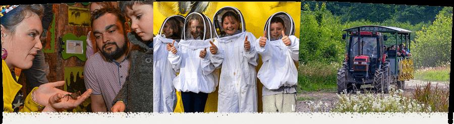 people on bee farm